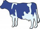 Carácter de la vaca