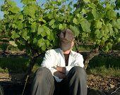 Sleepin' Through The Grapevine