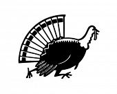 Turkey Running - Retro Clipart Illustration