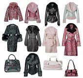 abrigo de piel de colección