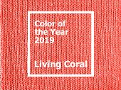 Color Of The Year 2019: Living Coral. Texture Of Colored Knitted Jersey. Fashionable Pantone Color O poster