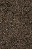 stock photo of field_stone  - Soil background - JPG