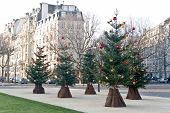 Streets Of Paris Before Christmas