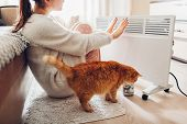 Using Heater At Home In Winter. Woman Warming Her Hands With Cat. Heating Season. poster