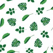 Pattern Tropical Green Leaves Of Plant, Palm And Tree On White Background. Seamless Pattern Green Fo poster