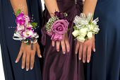 picture of senior prom  - Prom or wedding corsages - JPG