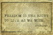Freedom Is The Right To Live As We Wish - Ancient Greek Philosopher Epictetus Quote Printed On Grung poster