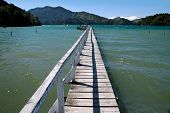 Landing Stage In The Marlborough Sounds