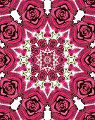 Dark Red Velvet Color Rose Kaleidoscope Pattern 2 poster