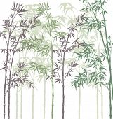stock photo of tropical plants  - vector background with bamboo forest - JPG