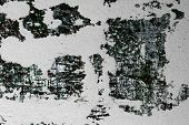 Pretty Large Shabby Cracks On Paint On Surface Texture - Abstract Photo Background poster