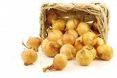 fresh pearl onions in a woven basket on a white background