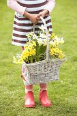 Detail Of Girl Holding Basket Of Daffodils In Garden