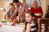 stock photo of christmas meal  - Family serving Christmas dinner - JPG