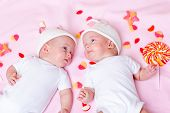 Newborn twin babies lying among sweets