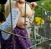 Girl And Fence