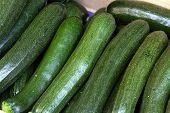 ripe cucumbers in the Farmers Market, close up