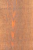 Cedar Wood Texture Close-up Background