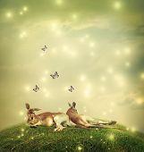 Kangaroos In A Fantasy Landscape