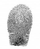 Real fingerprint in white background Super macro