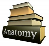 Libros de educación - anatomía