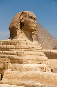Famous ancient statue of Sphinx