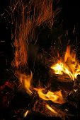 Flames Of A Campfire