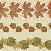 3 hand drawn borders from autumn leaves