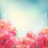 Постер, плакат: Shining flowers roses peonies background