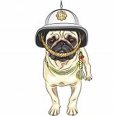 Vector Funny Cartoon Dog Pug In The British Helmet