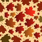 Seamless a background with maple leaves