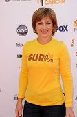 Dorothy Hamill at the 2010 Stand Up To Cancer, Sony Studios, Culver City, CA. 09-10-10