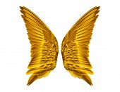 Pair of golden Bird Wings