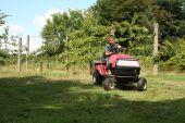 Garden Tractor Child Mowing Grass