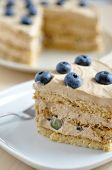 Coffee Cheesecake with blueberries