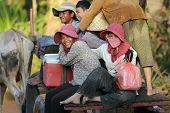 SIEM REAP, CAMBODIA, DECEMBER 04 : Cambodian people passengers in a traditional oxcart charriage on