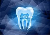 Tooth Cross Section Design