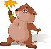 Groundhog Day Groundhog Day
