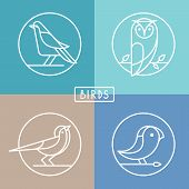 Vector Bird Icons In Outline Style