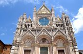 siena's cathedral