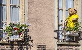 Tour De France Decoration