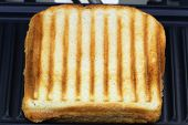 Toasted sandwich in toaster, close up