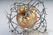 Golden Piggy Bank Behind Barbed Wire