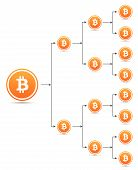 Bitcoin Organization Tree Chart