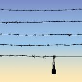 Barbed Wire And Padlock