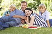 Family with picnic in park