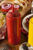 Organic Red Tomato Ketchup