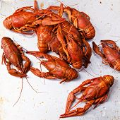 Boiled Red Lobsters On Textured Background