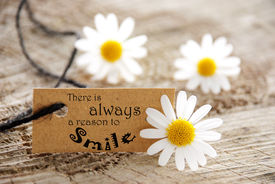 stock photo of wise  - A Natural Looking Label with the English Saying There is Always a Reason to Smile and Flowers in the Background - JPG