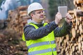 Lumberjack with tablet PC near piles of logs in forest